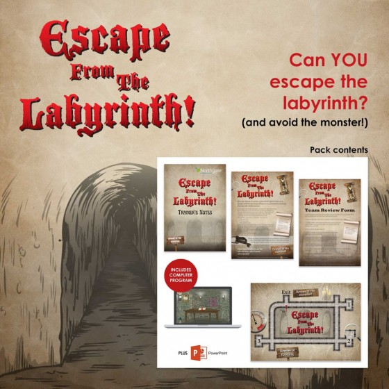 Escape from the Labyrinth! | Team Training Activity